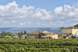 A-Winery-near-Ragusa