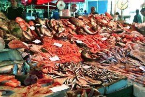 Catania-morning-fish-market-vendor