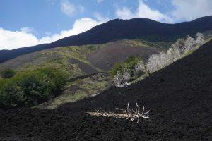 Etna-scenic-tour