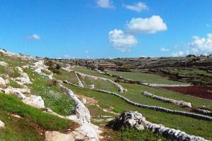Regular-Tour-to-Ragusa-and-Modica-from-Syracuse-2