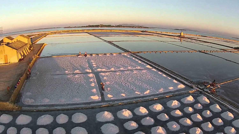 Salt harvested