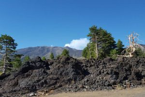 Transfer-tour-from-Taormina-to-Syracuse-via-Etna-Volcano-4